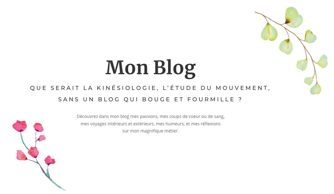 Blog nur auf Französisch